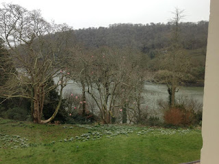 Greenway view of River Dart