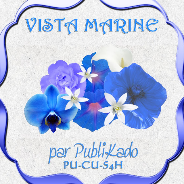 Vista Marine