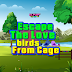 Knf Escape The Love Birds From Cage