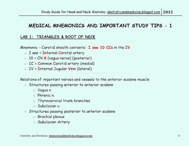 Netters Histology Pdf