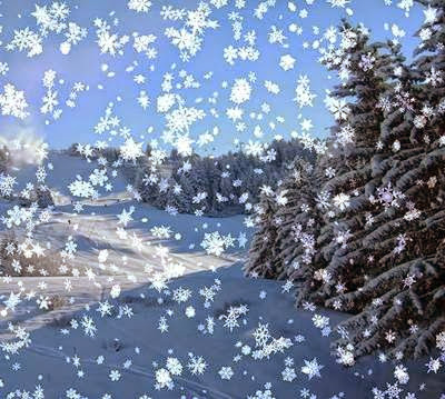 Cara Membuat Efek Salju,Daun,Bintang Berjatuhan Di Blog