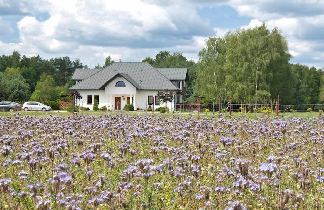 AGROTURYSTYKA POLANA & BRZOZOWY DWOREK