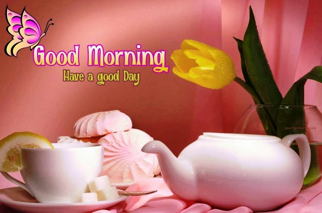 Best Good Morning Hd Images Wallpaper1080p For Whatsapp Free