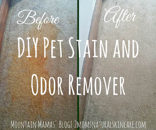 Pet Stain & Odor Remover - 25 Essential Oil DIYs RoundUp