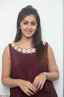 Nikki Galrani in a Brown Shining Sleeveless Gown at Nakshatram music launch ~  Exclusive 051.JPG