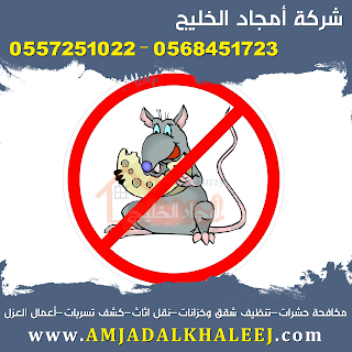 شركة مكافحة فئران بالمدينة المنورة 0568451723