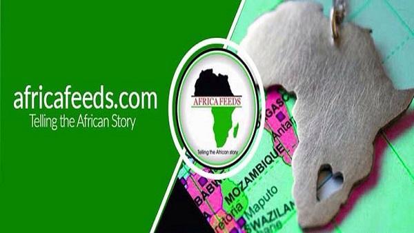 Africa Feeds Media Ltd Partners With Deutsche Welle
