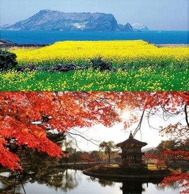 Promo Tour Wisata Muslim Korea Jeju
