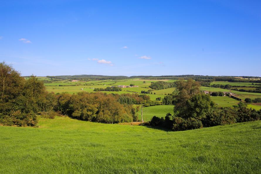The Grainary Farm ground