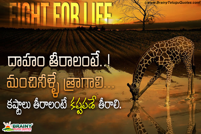 online telugu quotes on success, telugu best quotes, self motivational quotes in telugu
