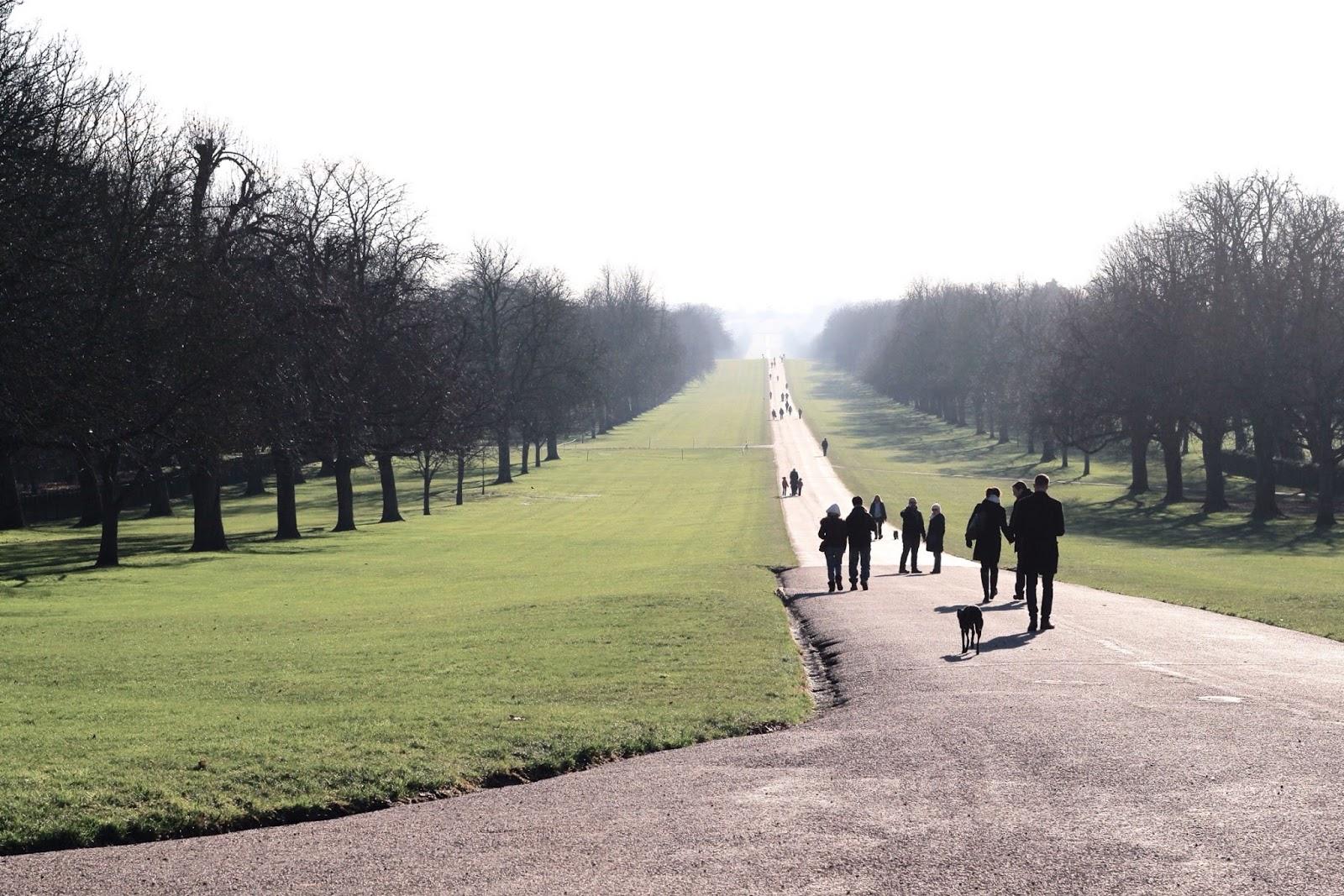 Windsor The Long Walk at winter