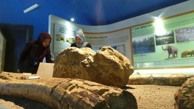 Museum ini merupakan salah satu museum yang diakui UNESCO sebagai warisan dunia