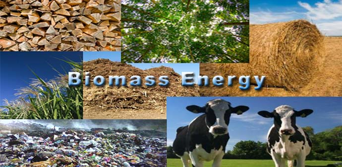 Sumber Energi Alternatif Biomassa