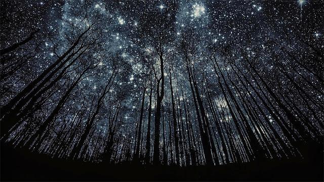 céu cheio de estrelas