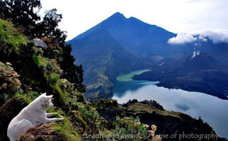 Info Lengkap Pendakian Gunung Rinjani Via Senaru