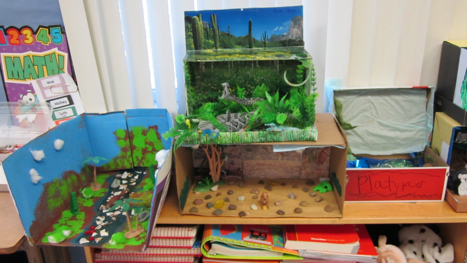 Shoebox Book Report.Shoebox Book Report Projects. 1000 ...
