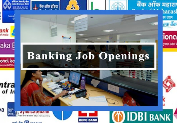 vacancy in bank, bank job vacancy, govt bank jobs, jobs in banking sector
