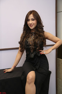 Angela Krislinzki in Transparent Black Gown at Rogue Movie Teaser Launch 1st March 2017 079.JPG