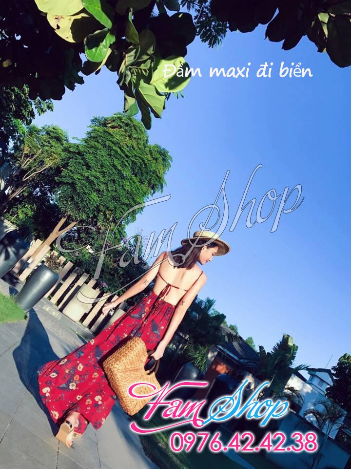 Vay Maxi tai Thuong Tin