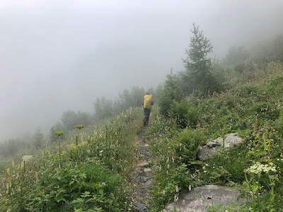 Walking in the mist and flowers. The only day we got a little rain.