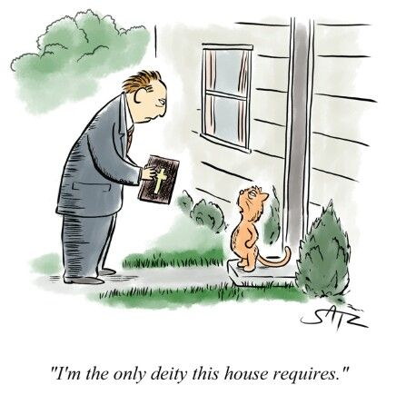 Funny Cat House Deity Cartoon Picture