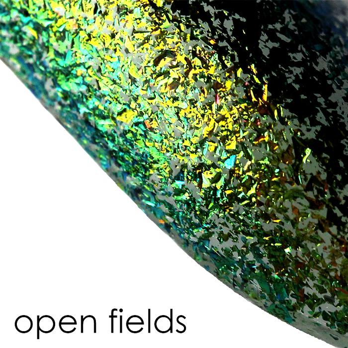 ILNP Open Fields