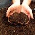 Kompost Nedir?