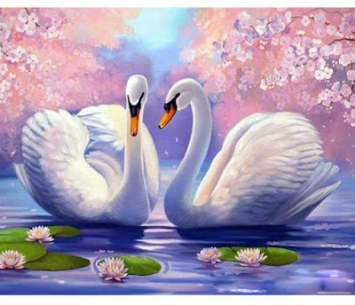 A Vision of Two Beautiful White Swans by Tammy Lang Jensen