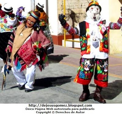 Foto del Jamille o Boliviano entre el chuto y Juajinas (Santa Cruz de Andamarca) por Jesus Gómez