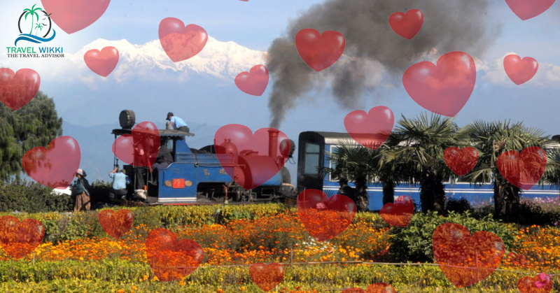 Ooty in Valentines Day