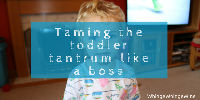 Surviving the 'Terrible Twos': How to deal with toddler tantrums Plus details of our two year check.