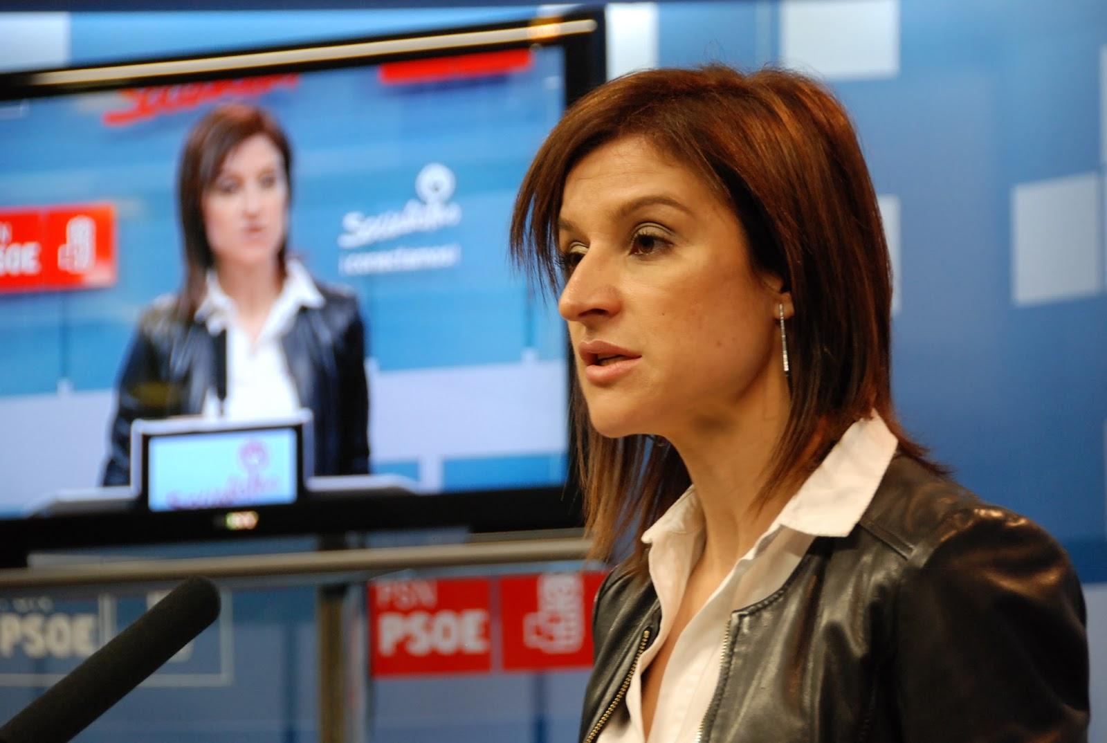 El PSN-PSOE solicita explicaciones al Gobierno de Navarra por la publicación de un pliego con el nombre de un posible adjudicatario del servicio