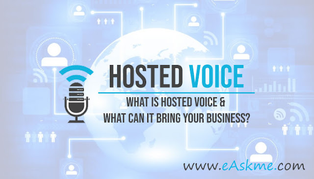 What Is Hosted Voice and What Can It Bring Your Business?: eAskme