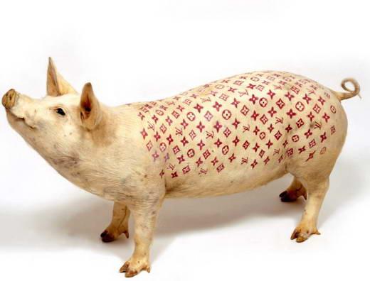 10 Hewan dengan Warna dan Corak Tidak Biasa 1303 basir