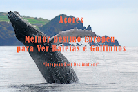 http://1641kmopiniao.blogspot.pt/2017/12/european-best-destinations-elege-os.html