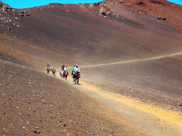 riding donkey at Hawaii Mountain