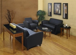 Homey Lounge Furniture