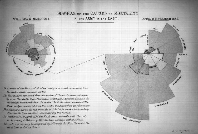 Diagrama das causas de mortalidade