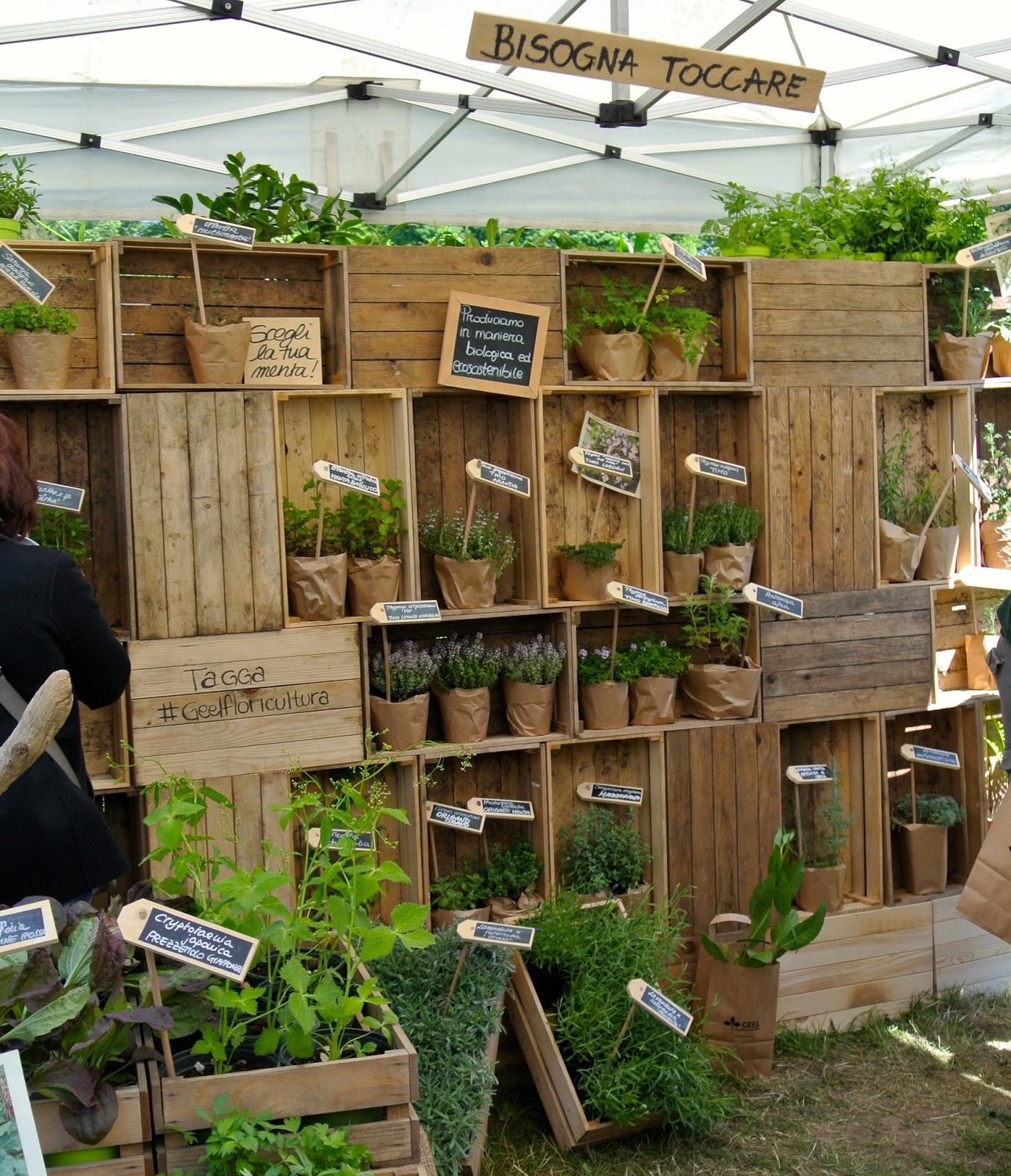 Ultimissime dall 39 orto tre giorni per il giardino gli for Cartellini per piante