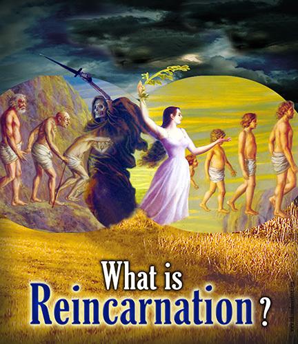 majhienbÜ: Do you believe in reincarnation?