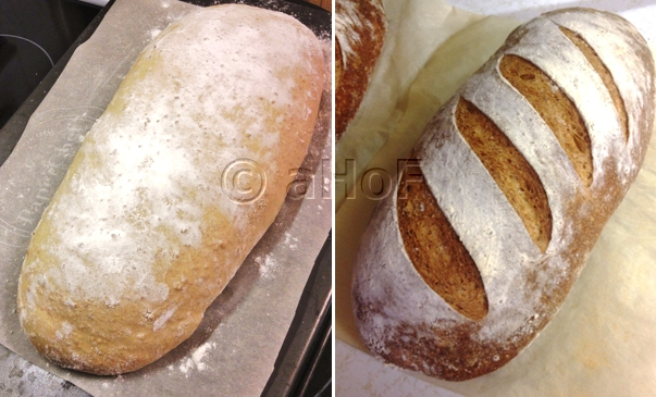 Columbia Bread, before and after baking