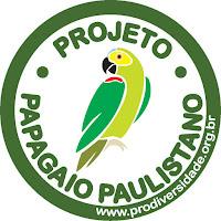 Papagaio Paulistano