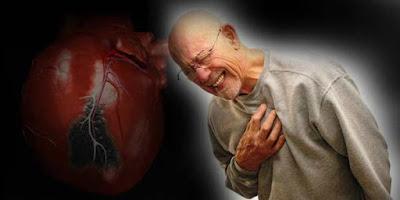 jantung koroner qnc jelly gamat