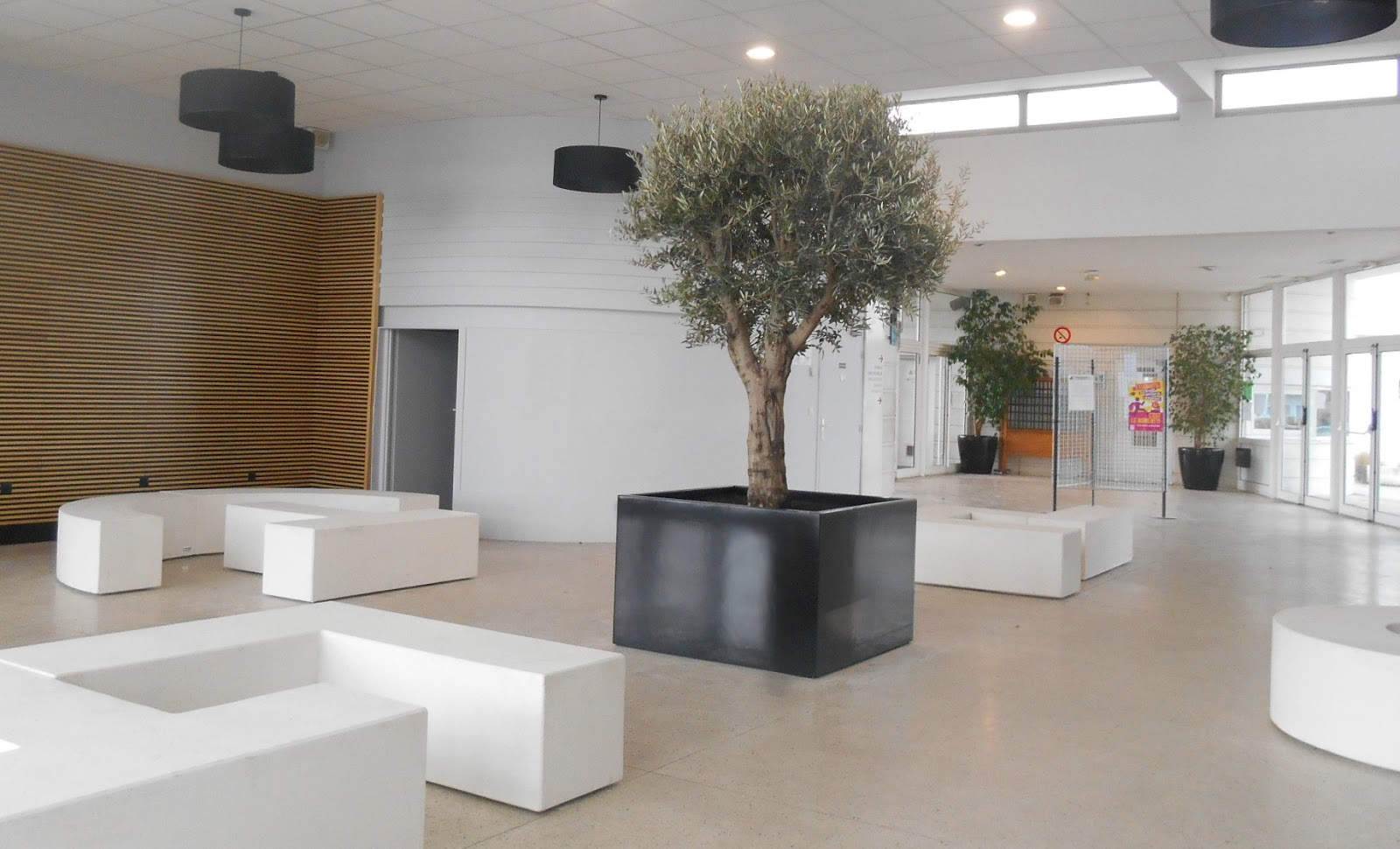 galerie photos bacs sur mesure image 39 in le bac arbre indoor image 39 in. Black Bedroom Furniture Sets. Home Design Ideas