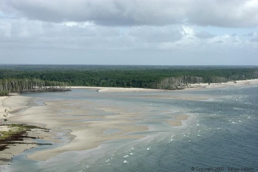 Ilha de Maracá