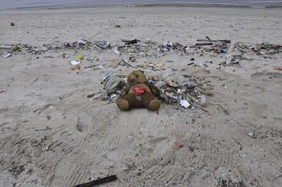Kerusakan Lingkungan yang Disebabkan oleh Alam & Manusia