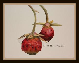 wild strawberries 30in30 ncwren watercolor 8x11