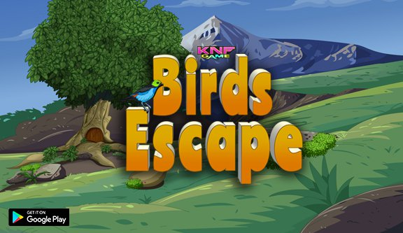 KnfGame Birds Escape