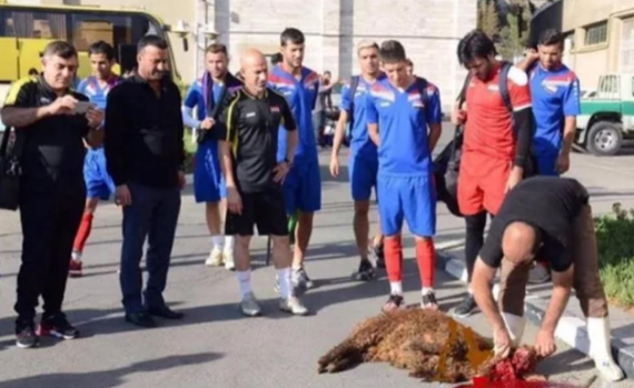 Iraqi national team publicly sacrifice sheep so that they can qualify for Russia 2018 World Cup (PHOTO)