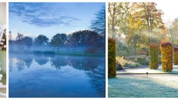 Cuatro fotos y una portada para la Royal Horticultural Society (RHS)